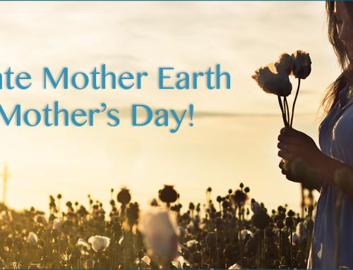 Celebrate Mother Earth this Mother's Day!